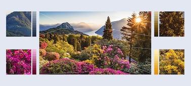 Rendkívül részletgazdag képek hegyi virágokról XR HDR Remaster funkcióval